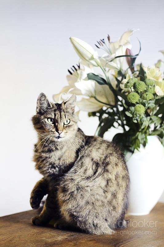 Zazie aux fleurs